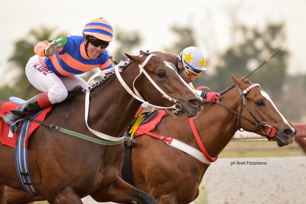 This Way (Interaction) se queda con el Clásico Polla De Potrillos (G3-1600m-Arena-LP). - Staff ElTurf.com